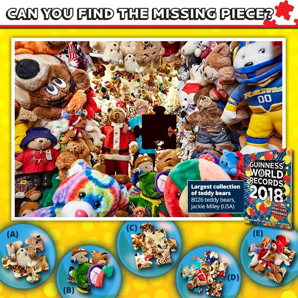 Largest collection of teddy bears puzzle