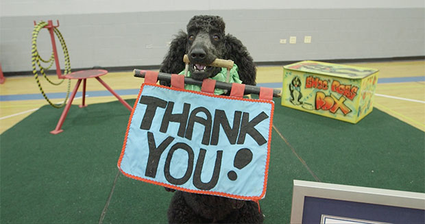 Sailor the dog says thank you