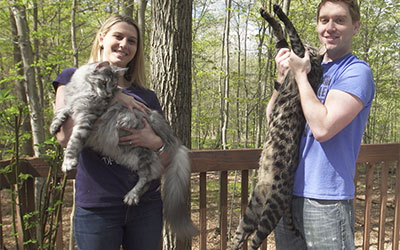 Tallest cat and longest tail live together