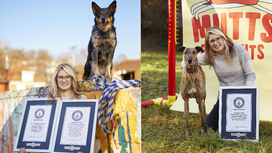 Meet two amazing record breaking dogs